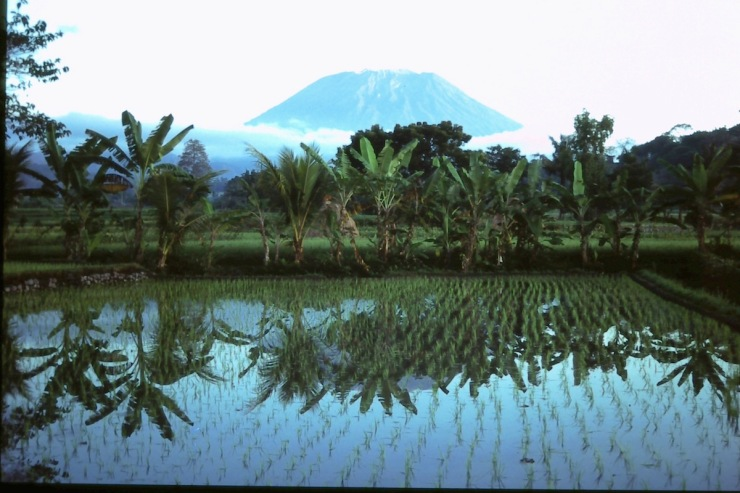 Bali_Volcano